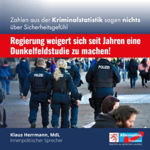 """Read more about the article PKS 202: """"Fundierte Bewertung erst nach Vorlage der vollständigen PKS möglich"""""""