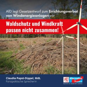"""Read more about the article """"Waldschutz und Windkraft passen nicht zusammen"""""""