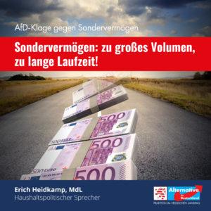 """Read more about the article """"AfD-Klage gegen Sondervermögen: """"Die Begründung des Sondervermögens ist weg"""""""