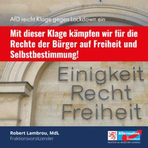 Read more about the article AfD reicht Klage gegen Lockdown ein!