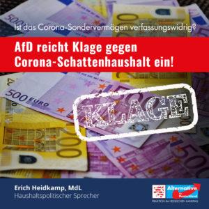 Read more about the article AfD-Fraktion klagt gegen Sondervermögensgesetz!